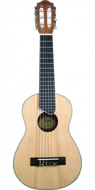 GUITALELE FLIGHT MOD. GUT350 SP/SAP