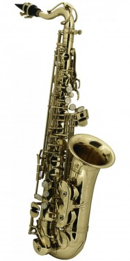 SAXOFON ROY BENSON   MOD. AS-201