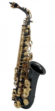 SAXOFON ROY BENSON   MOD. AS-202K
